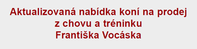 vocasek_new