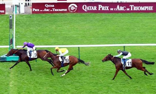 Ideal Approach Longchamp