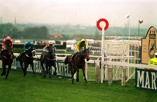 grand national 1993