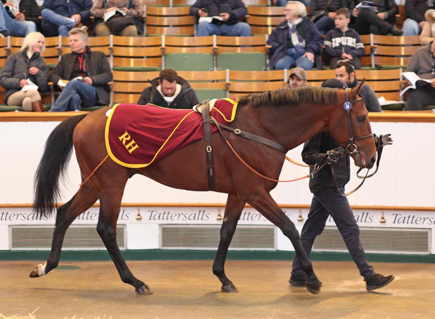 lot94hit127tattersalls