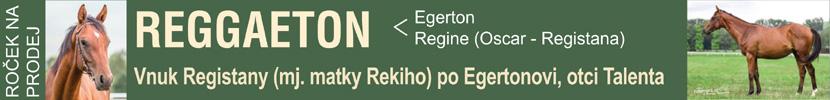 Regaetton