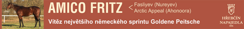 Amico Fritz 2020
